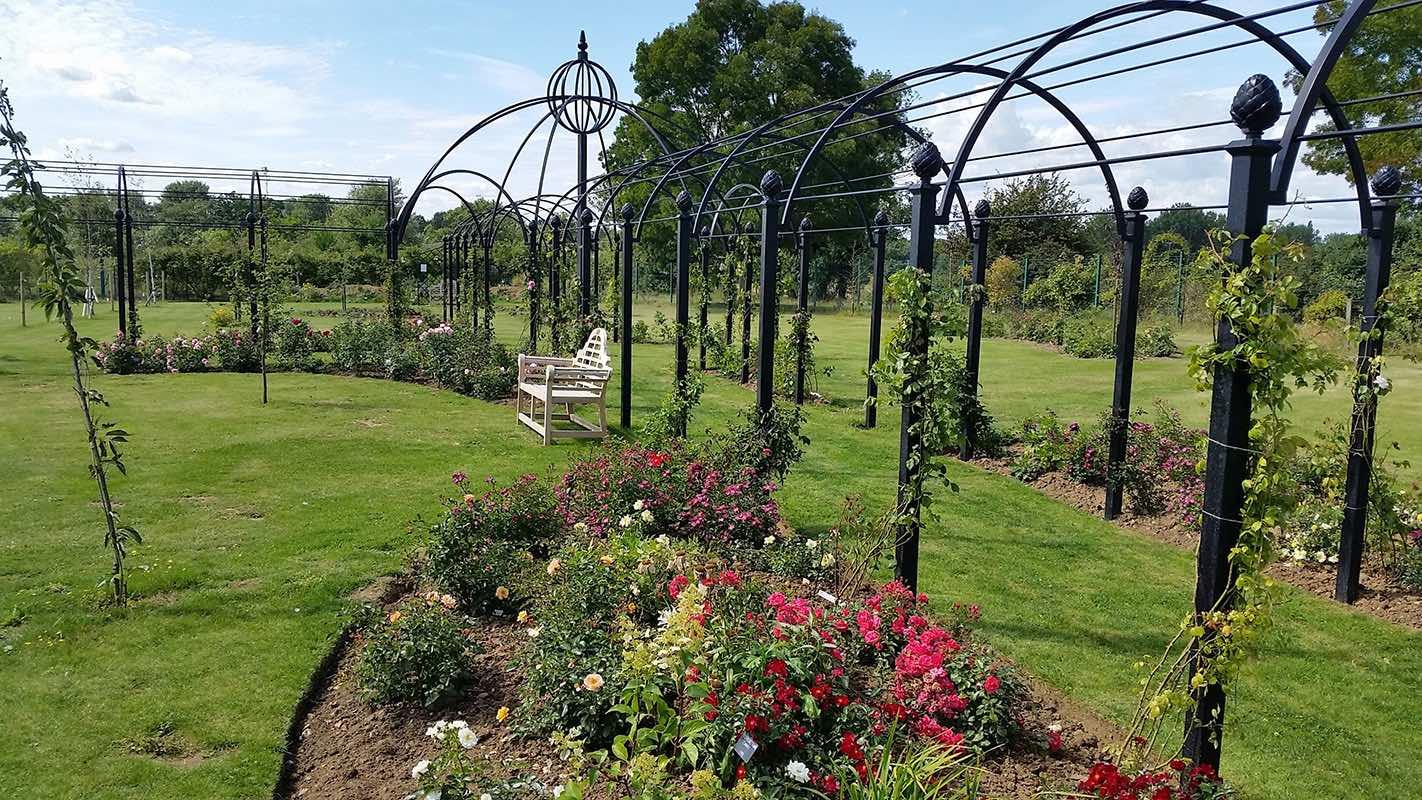 Laubengang mit Rosen aus Metall mit Rosenpavillon