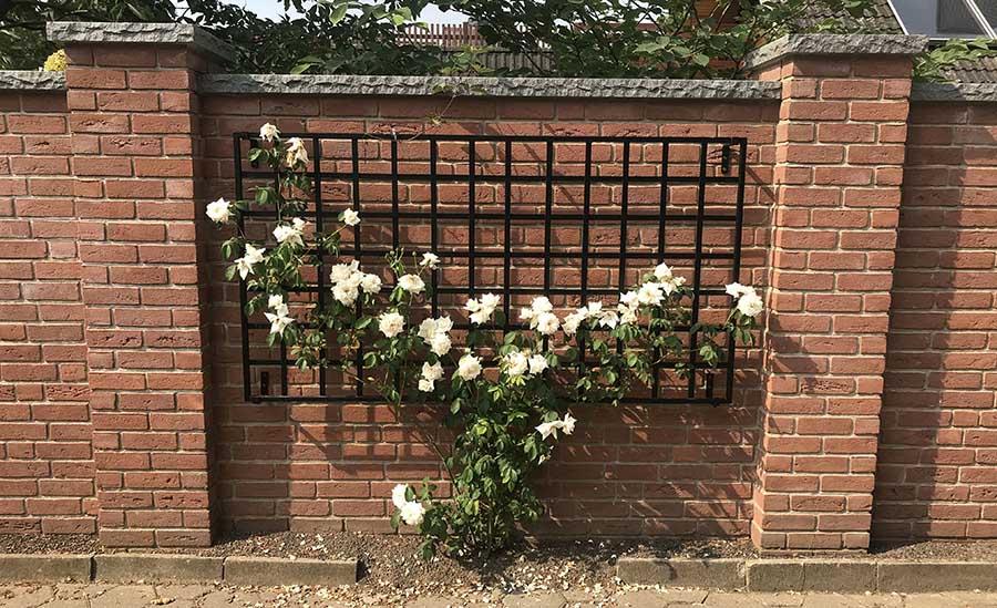 Rankgitter im Bauhaus Design mit weissen Rosen