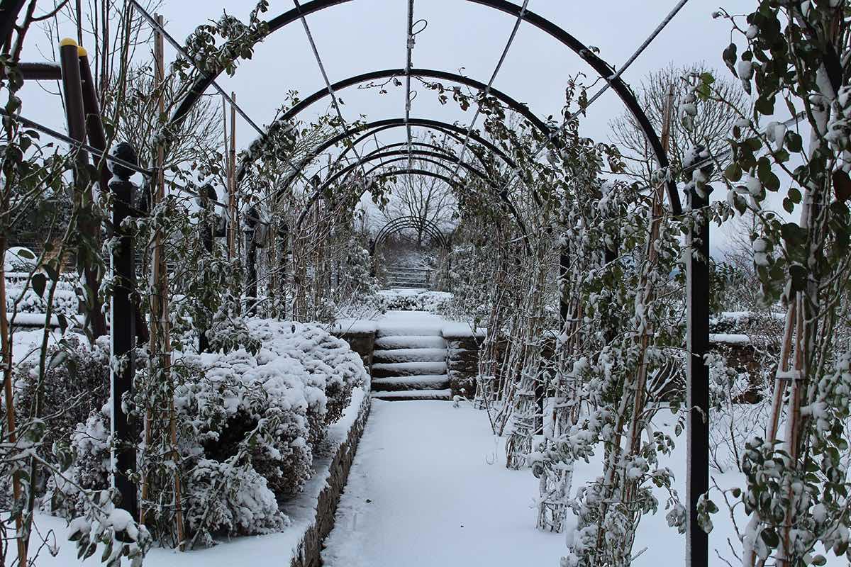 Romantischer Laubengang aus Metall nach Maß im Winter