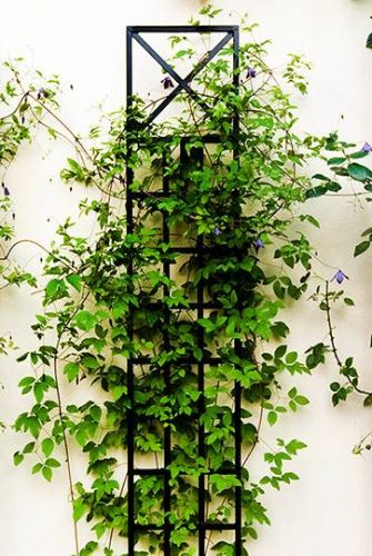 Schmales Spalier für Pflanzen an Wand aus Metall 200 x 30 cm