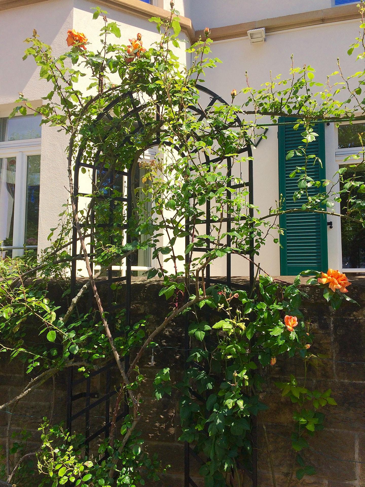 Grosses Rankgitter Trompe-l'œil Rankgitter Classic Garden Elements