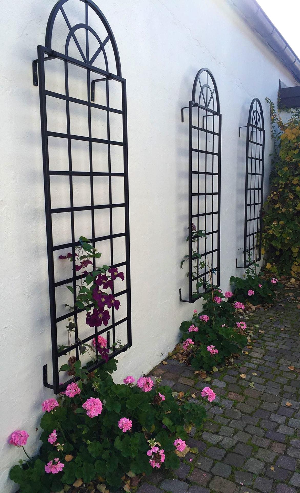 rosen rankhilfe. das bild wird geladen with rosen rankhilfe. elegant