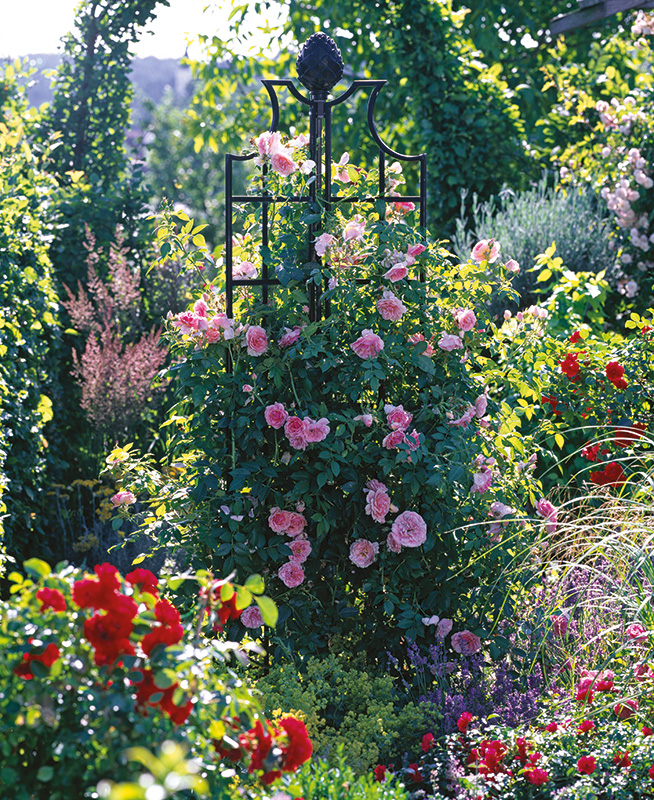 Obelisk mit rosa Rosen