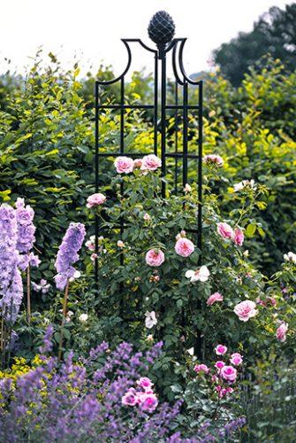 rosenobelisk mit rose kir royal