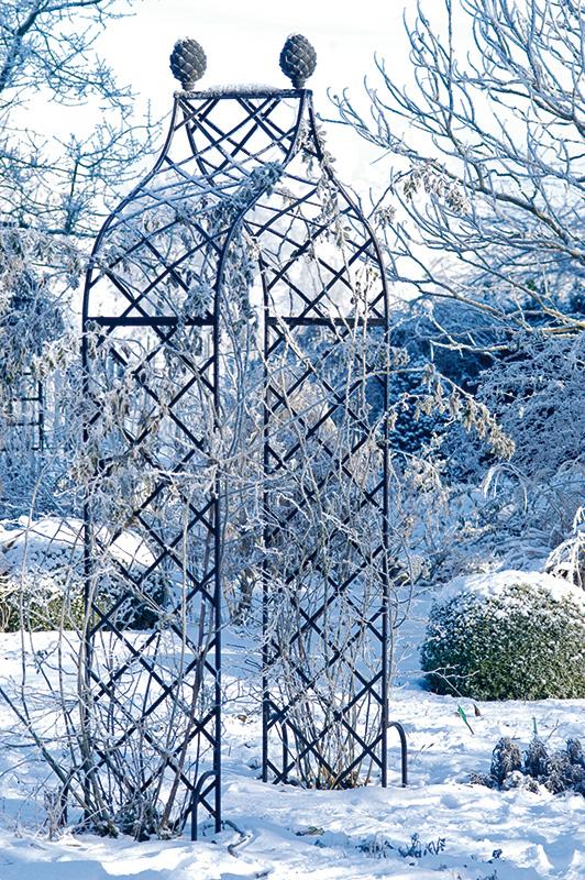 rosenbogen im winter mit raureif