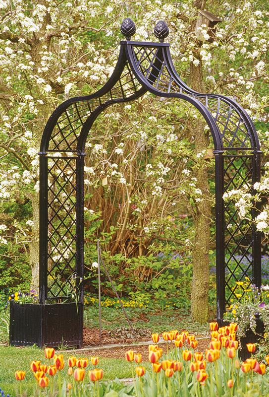 Victorian Rose Arch Brighton
