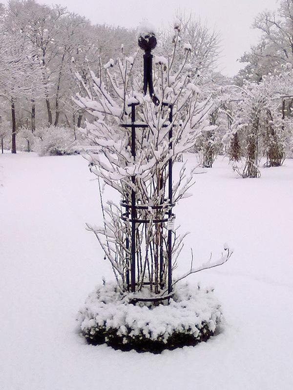 rankobelisk im schnee