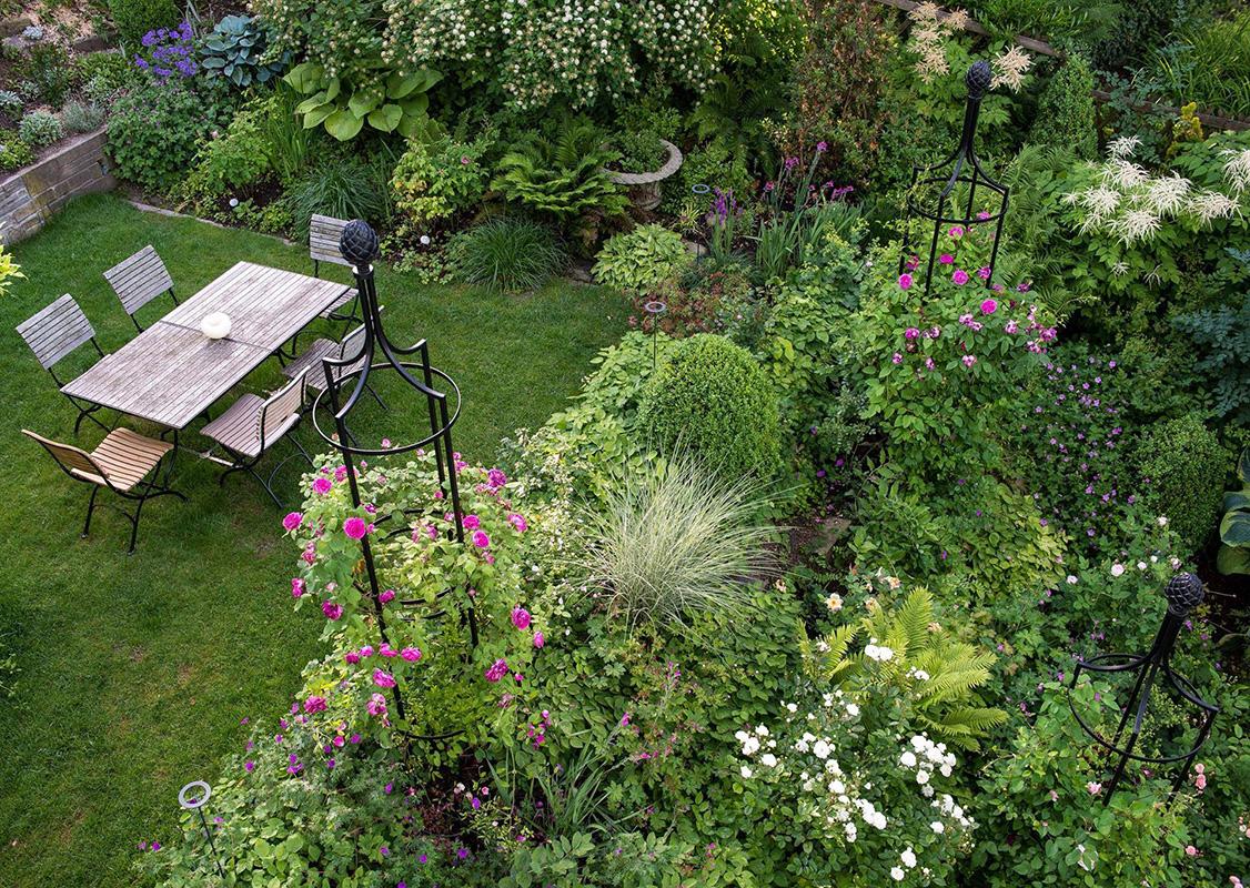 rankobelisk mit rosen im privatgarten