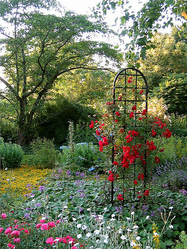 Freistehende rankhilfe burlington classic garden elements de for The gardener burlington