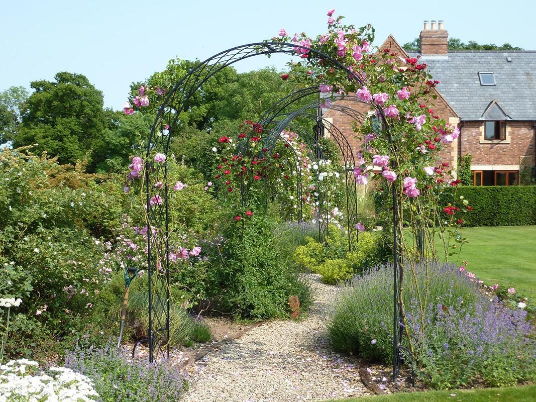 rosenbogen in englischem cottage garten