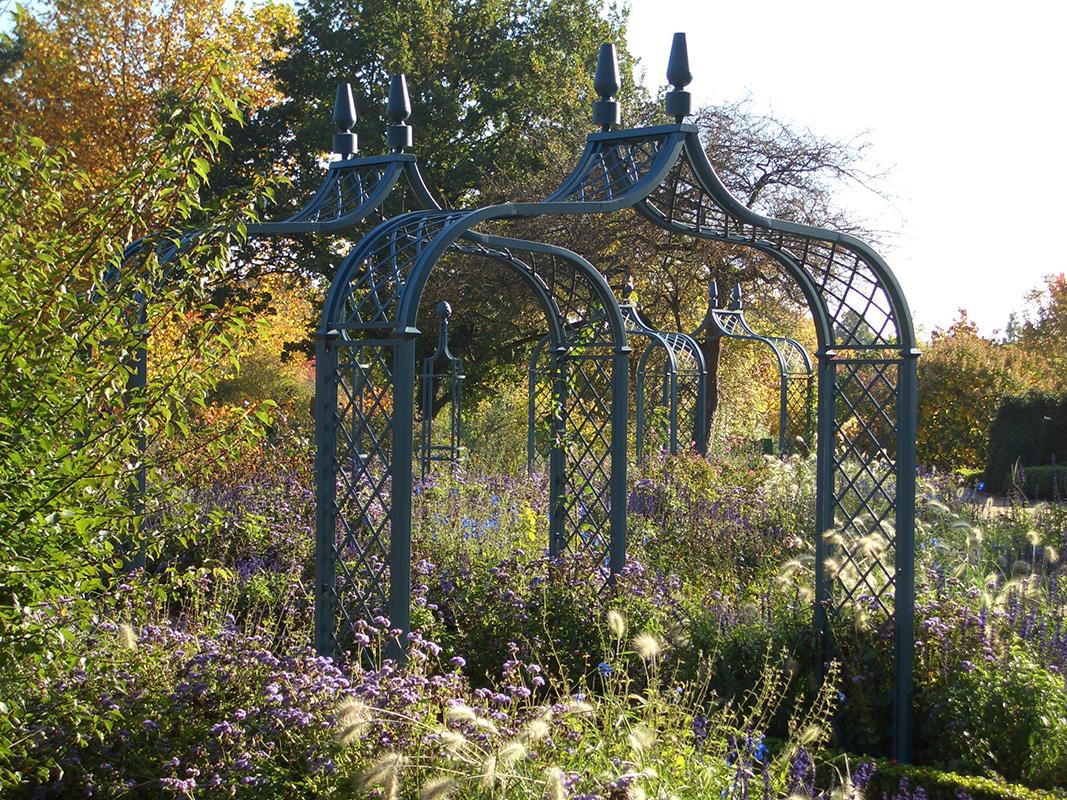 Rosenbogen Brighton im Herbst im Arboretum Ellerhoop