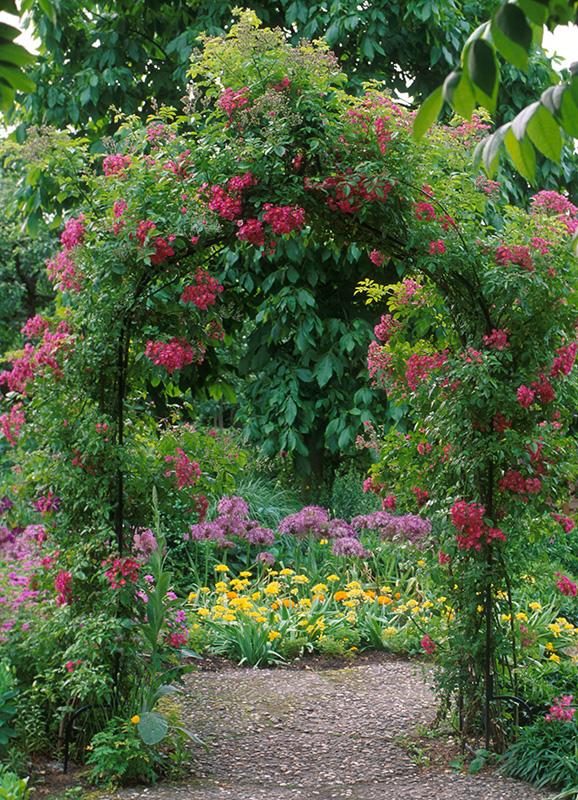 viktorianische rosenbögen aus metall