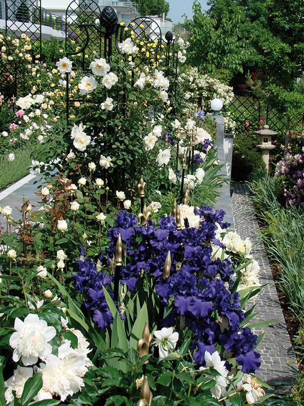 Rosenobelisk II im Rosengarten