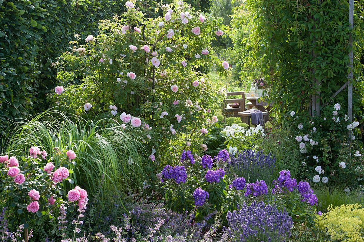 Rosenobelisk im Sommergarten