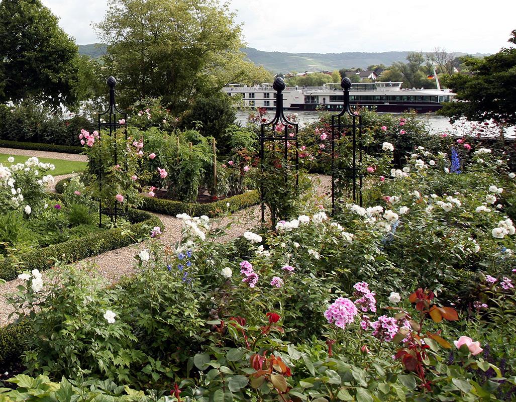 Rosenobelisk im Rosengarten am Rhein
