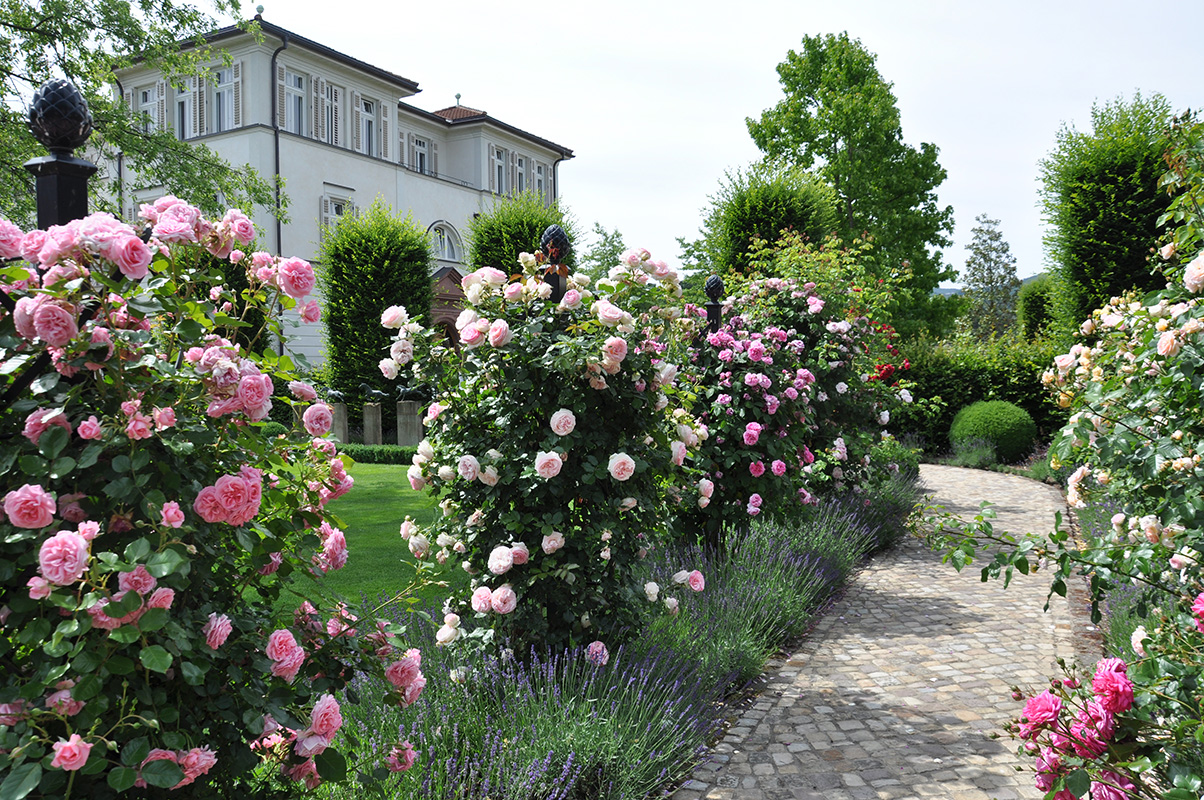 Villengarten mit rosenranksaeulen