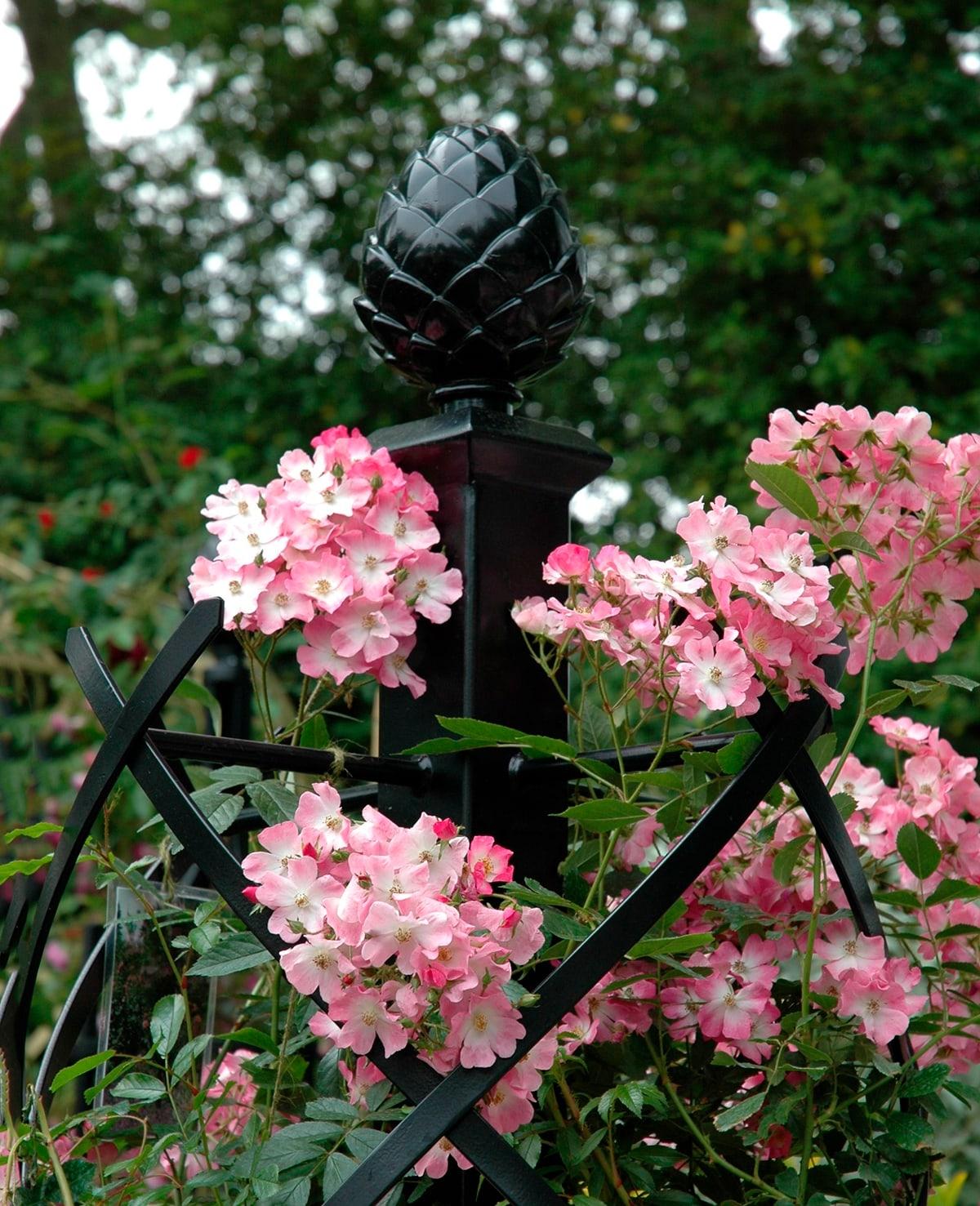 Rosensaeule Charleston mit Pinienzapfen von Classic Garden Elements auf der Chelsea Flower Show 2005