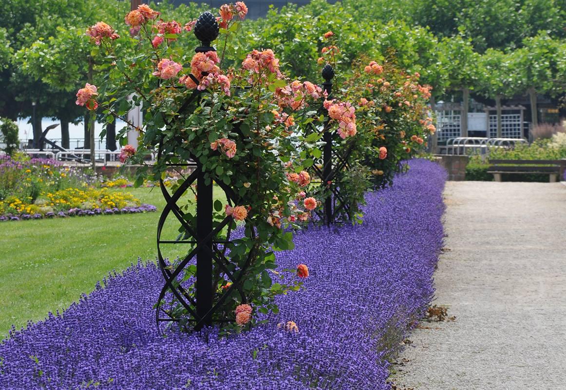 Rosensaeule Charleston mit Pinienzapfen von Classic Garden Elements