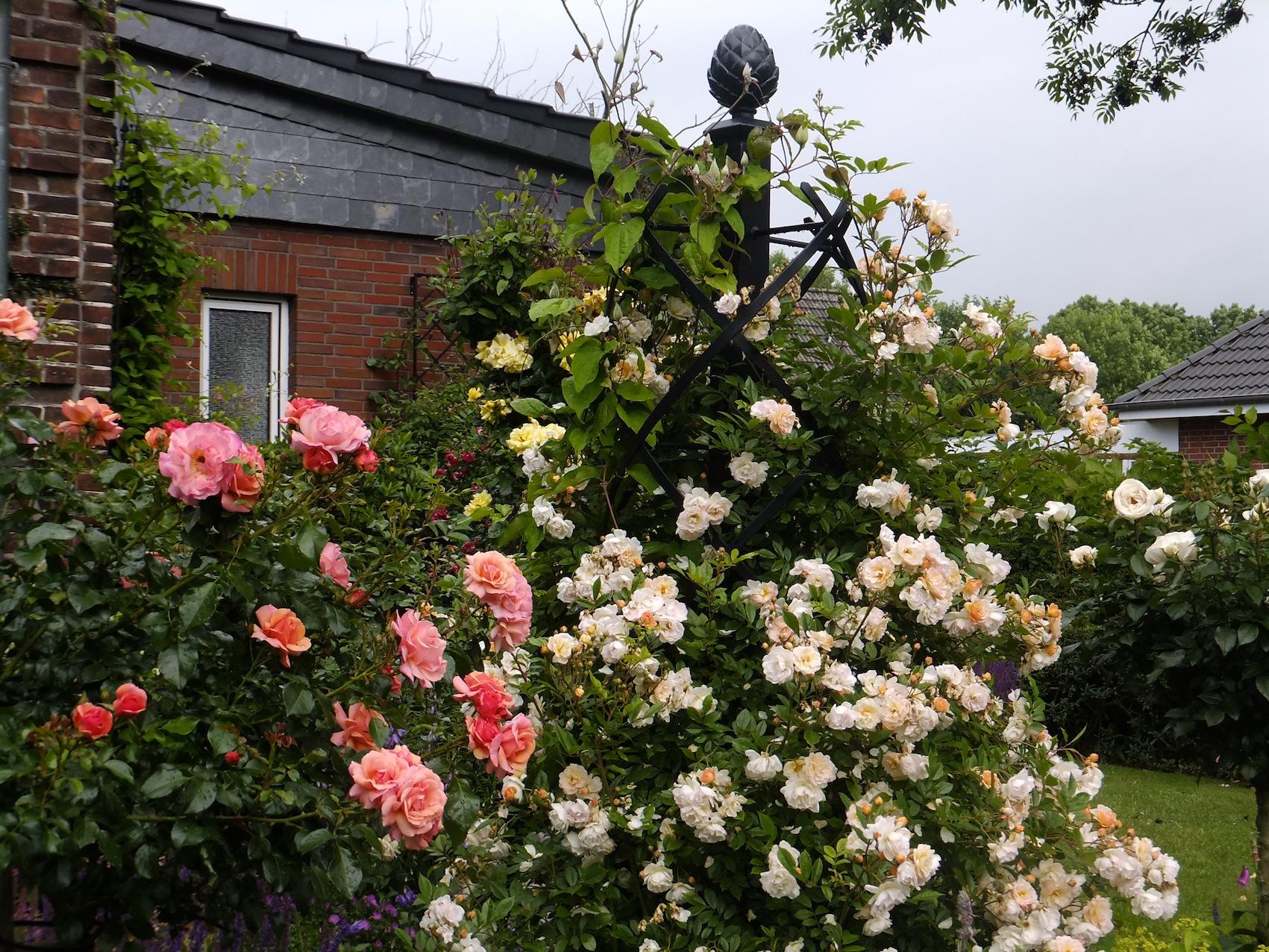 Handgemachte Rosenobelisk aus Metall,