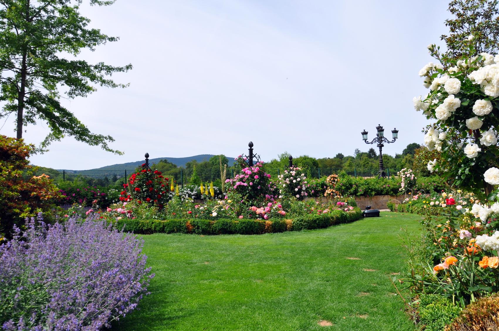 Rankhilfen Rosen im Garten, Muster, Online Shop,