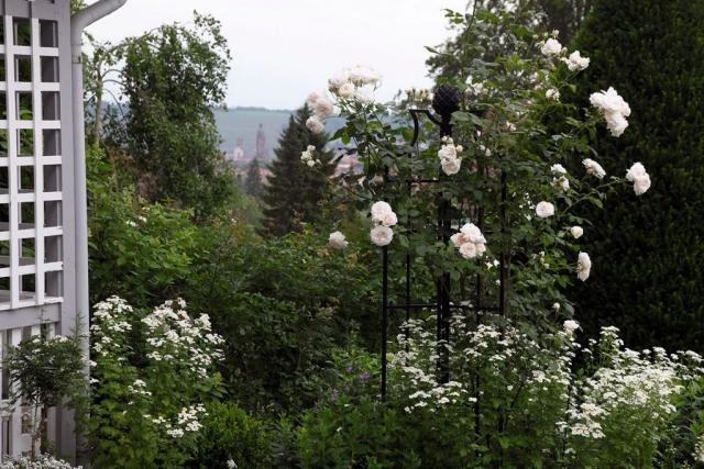 Rosenobenlisk für Rosa Rosen, Blick in Garten mit Rankhilfe Rosen,
