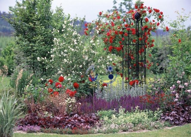 Wunderschöne Rosenobelisk,