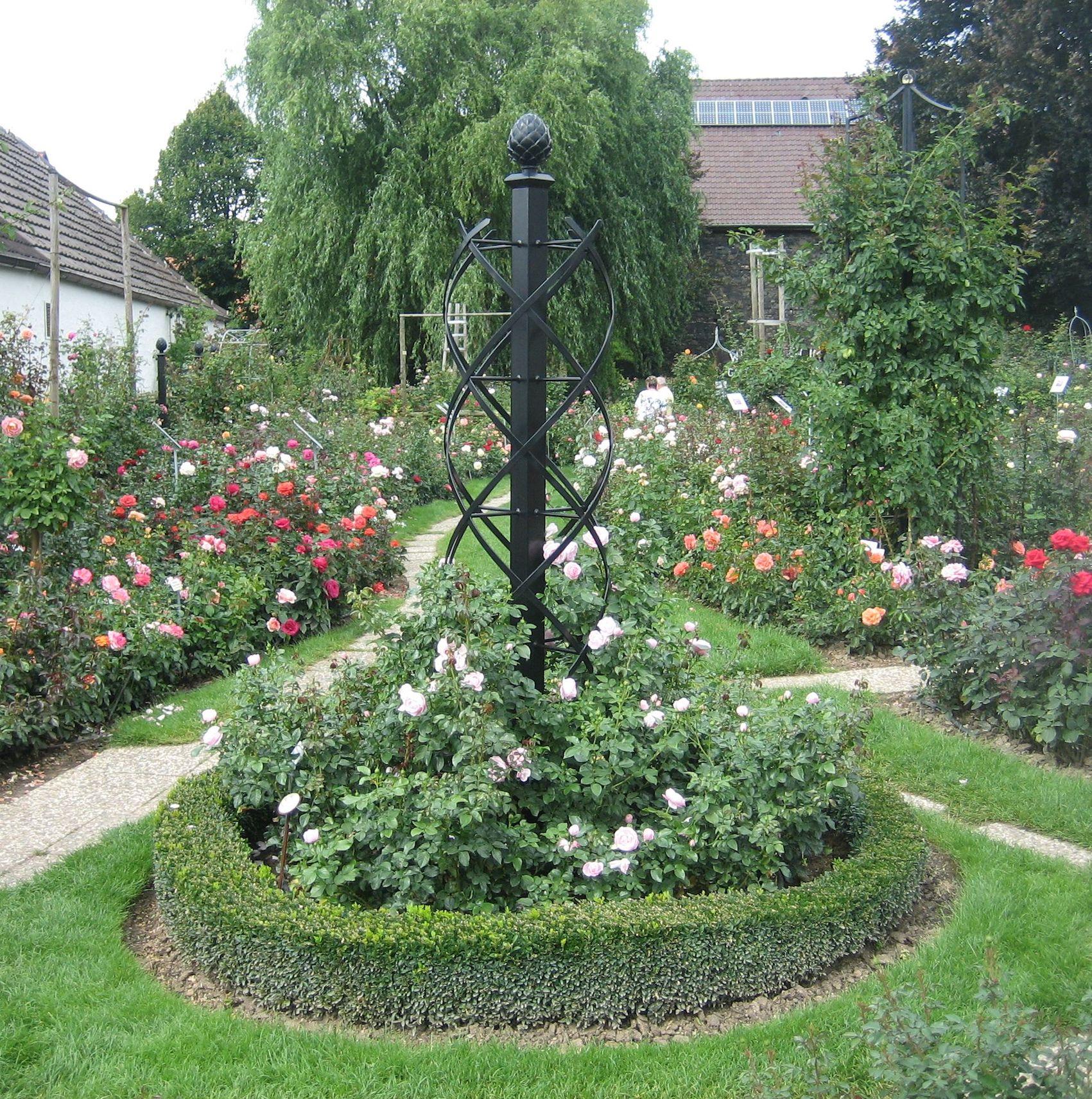 Metall Rosenobelisk im Garten,