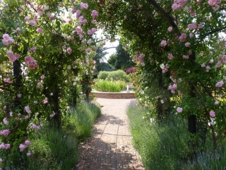 Laubengang Metall mit Rosa Rosen und Springbrunnen