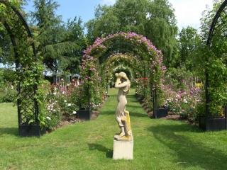 Laubengang Metall mit Rosa Blumen im Park