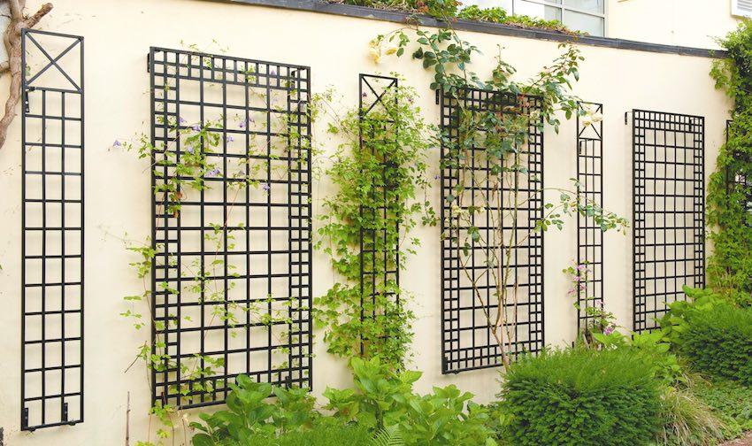 Sechs Wandrankgitter Schwarz an gelber Wand für Pflanzen und Rosen