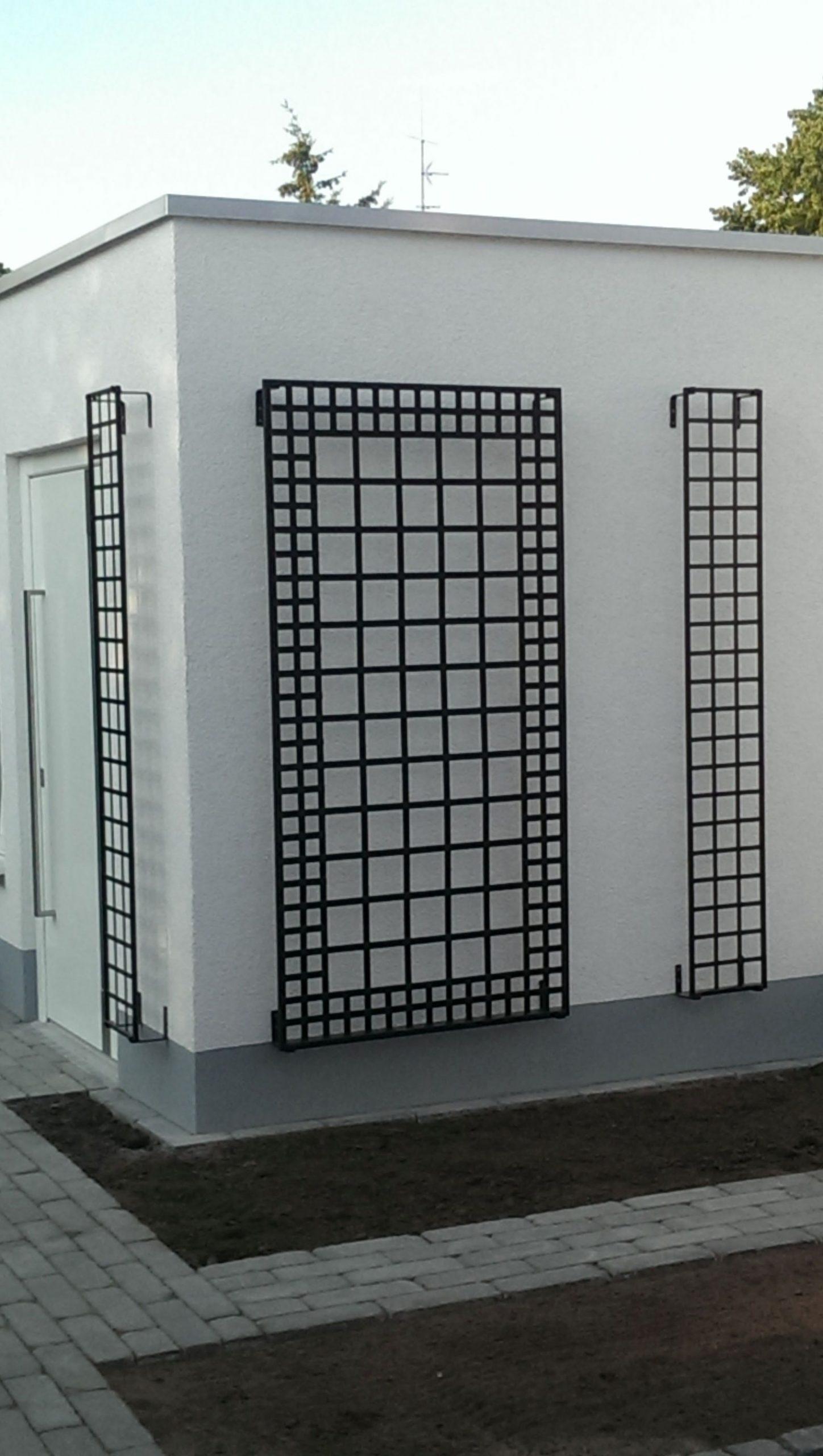 Drei Wandrankgitter an weißer Wand. Hochwertig und exklusiv