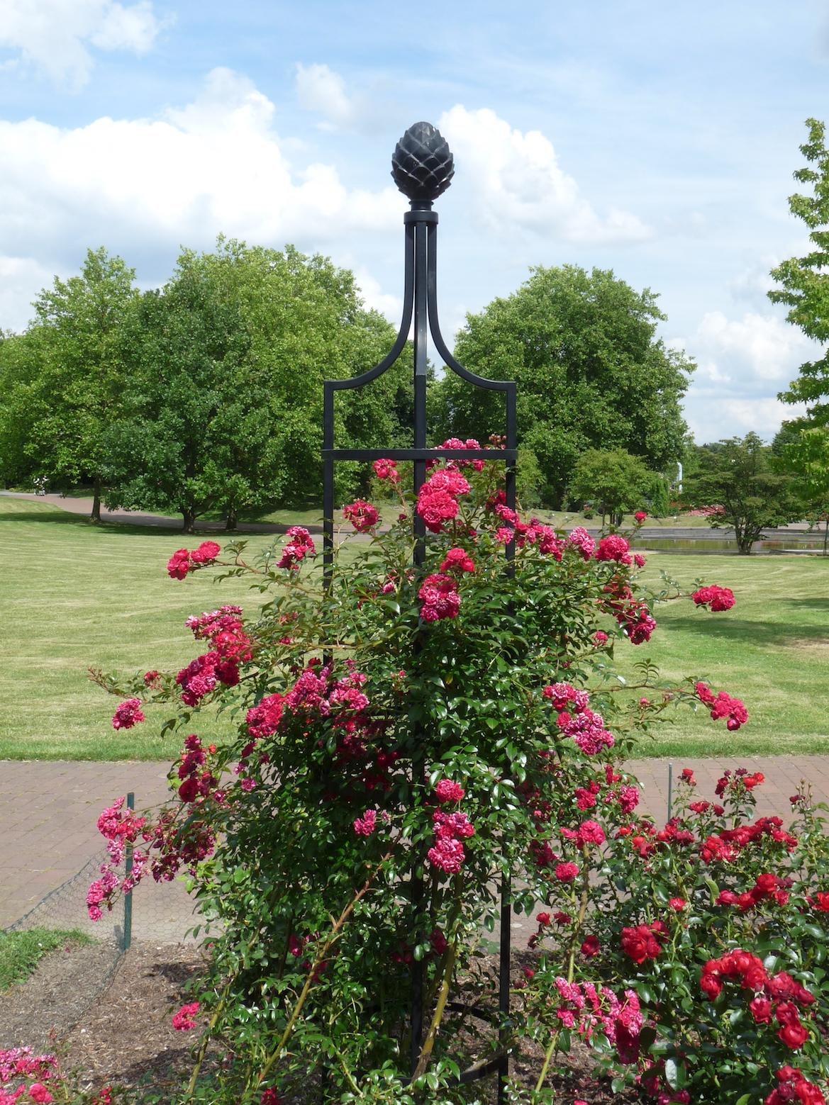 Freistehende Rankhilfe in Schwarz aus Metall mit roten Rosen