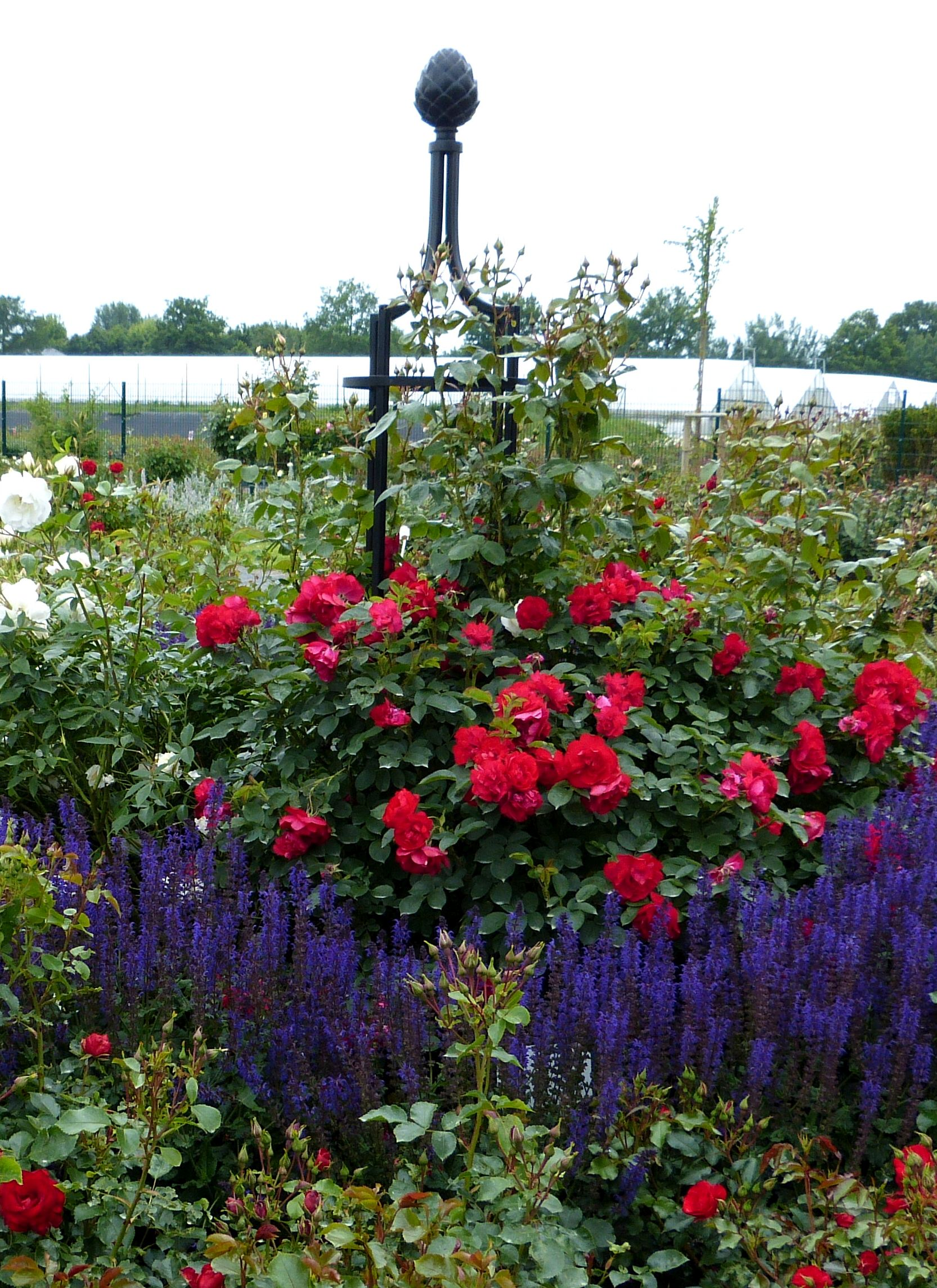 Rankobelisk aus Metall Gartenobelisk I Classic Garden Elements