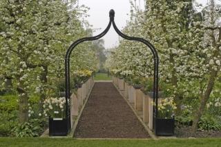 Rosenbogen Metall Schwarz vor Weg mit Obstbäumen