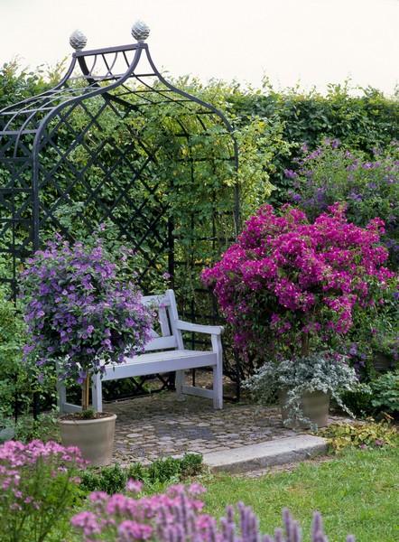 Rosenlaube-Metall-Arboretum-ellerhoop