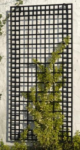 Wand Rankgitter aus Metall in Schwarz