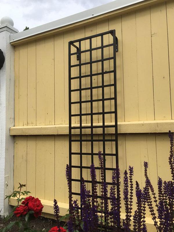 Wand Rankgitter aus Metall in Schwarz an gelber Holzwand