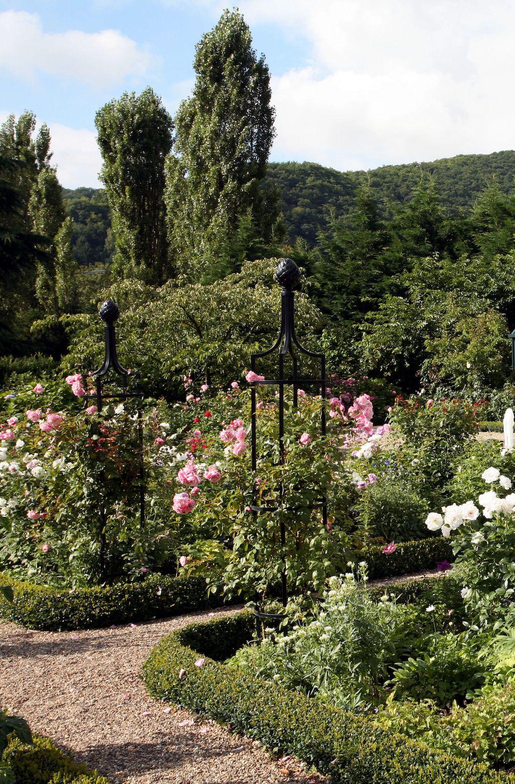 Zwei freistehende Rankgitter in Schwarz im Garten, bewachsen mit rosa Rosen