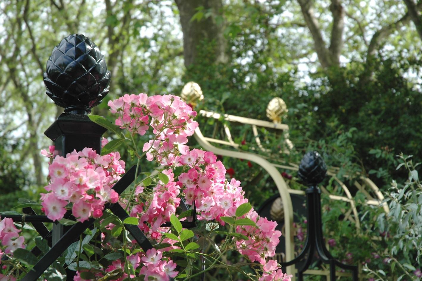 Chelsan Flower Show Rosenbogen Gold