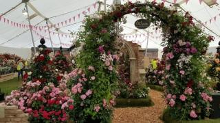 Chelsea Flower Show Rosenbogen von Classic Garden