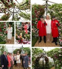 Chelsea Flower Show 2015