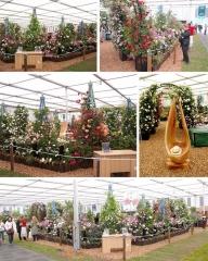 Chelsea Flower Show 2018