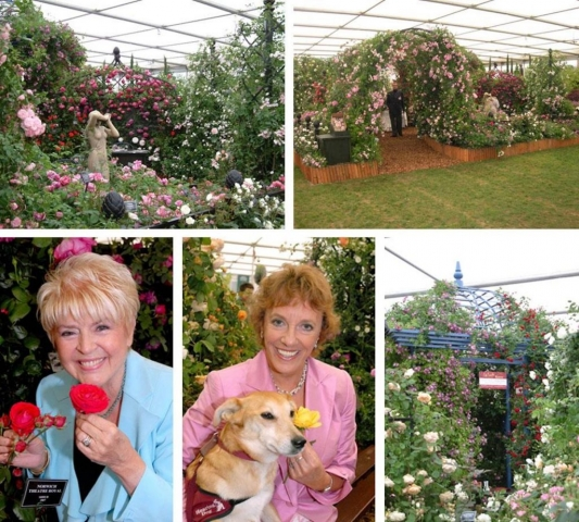 Chelsea Flower Show Collage