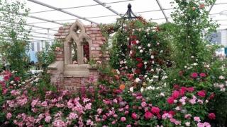 Chelsea Flower Show Mustergarten
