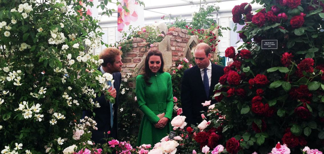 Chelsea Flower Show Prince William