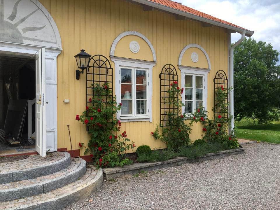 Drei Orangenspalier nach Maß in Schwarz an gelber Hauswand