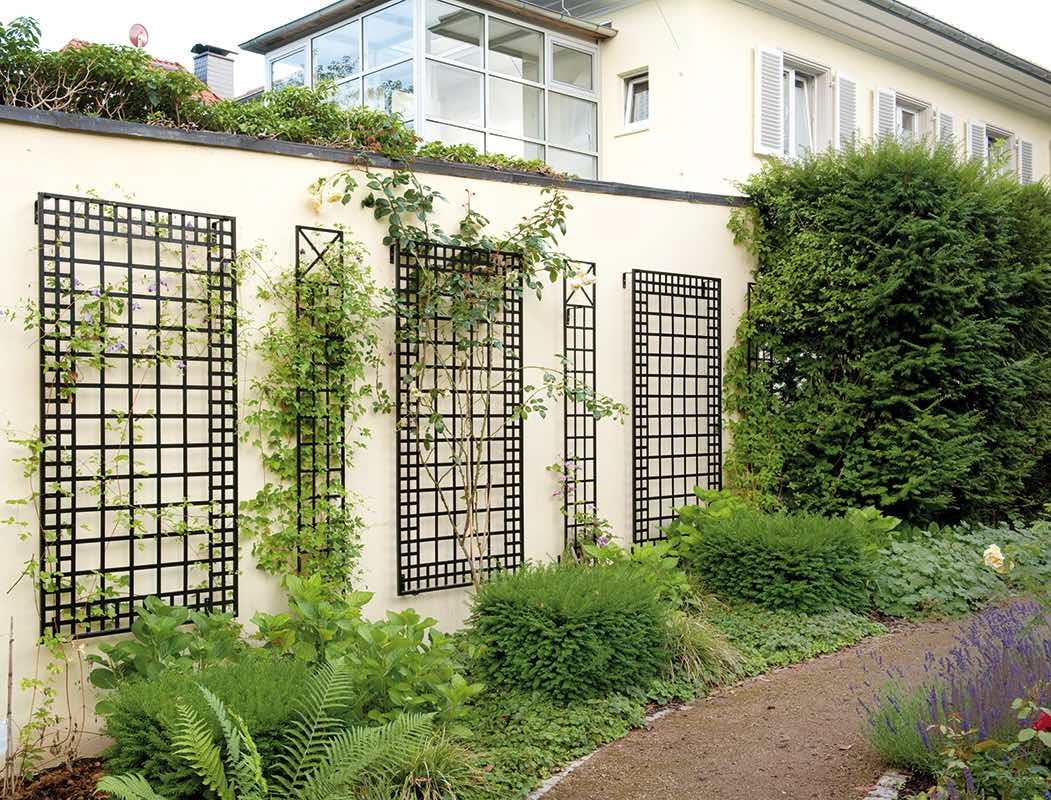 Fünf Wandspaliere für Rosen und Pflanzen aus Metall an Wand