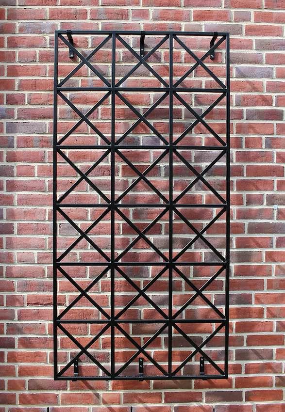 Metallspalier für Rosen 100 x 200 cm in Schwarz an Hauswand
