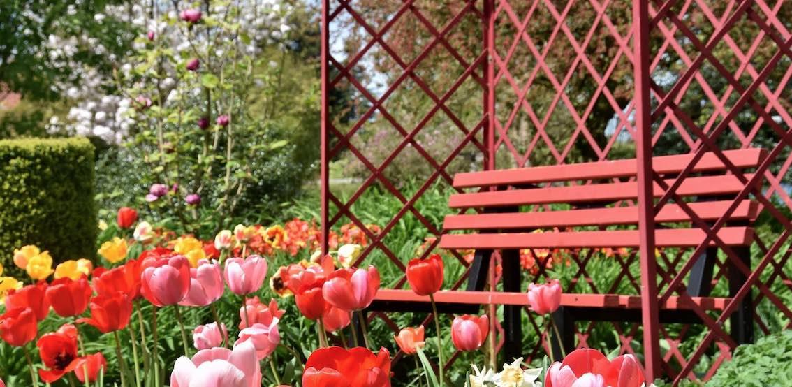 """Romanische Gartenlaube"""" in der Farbe Rot"""