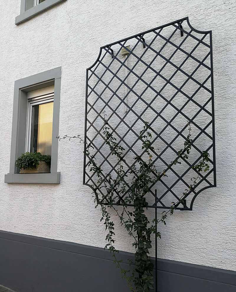 Wand-Rankgitter-Wollaton-schmückt-Hauswand-in-Hessen